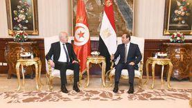 خلال لقاءه السيسي.. قيس يثمن جهود مصر المخلصة للتوصل لاتفاق بأزمة السد