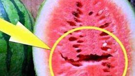 إزاي تشتري «بطيخة سليمة» بدون هرمونات؟.. أستاذ تغذية يوضح 5 علامات