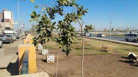 أسيوط تواصل فعاليات المبادرة الرئاسية «اتحضر للأخضر»