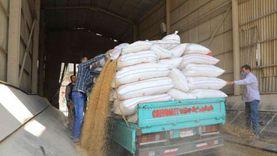 تأجيل توريد القمح المحلي في الدقهلية لـ20 أبريل