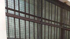 أسباب حبس حنين حسام 10 سنوات في قضية الاتجار بالبشر