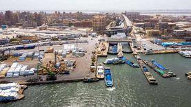 أبرزها مواد بترولية.. تداول 260 ألف طن بضائع بميناء الإسكندرية