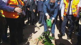 بروتوكول تعاون بين القوى العاملة وجامعة أسوان لزراعة 1100 شجرة