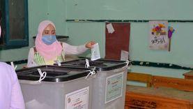 التنمية المحلية: الأمور مستقرة في لجان انتخابات الشيوخ