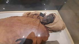 4 ديسمبر.. موكب نقل المومياوات الملكية إلى متحف الحضارة بالفسطاط