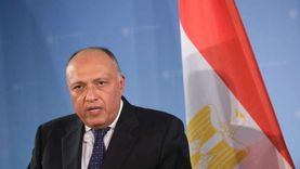 الولايات المتحدة تعرب عن دعمها لاتفاقية ترسيم الحدود بين مصر واليونان