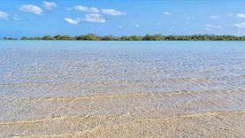 شواطئ جنوب البحر الأحمر خالية من التكدس وبدون حظر