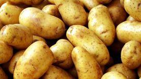 3 أسباب لارتفاع أسعار البطاطس.. الطن وصل لـ3500 جنيه