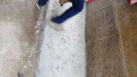 """مواطن يزرع """"مسامير"""" مقلوبة أمام منزله لمنع تجمع الأطفال بالدقهلية"""