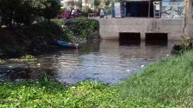 برلماني: ورد النيل يتسبب في فقدان 2 مليار متر مكعب مياه سنويا