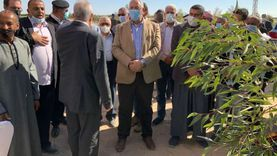 وزير الزراعة: زراعة 33 ألف فدان بجنوب سيناء