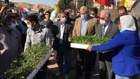 وزير الزراعة ومحافظ جنوب سيناء يوزعان شتلات مجانية على المزارعين