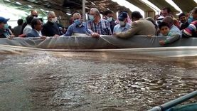 5 أطنان حجم الإنتاج المتوقع للمزرعة السمكية بنويبع سنوياً