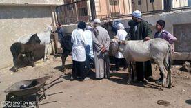 جامعة سوهاج تنظم قافلة بيطرية مجانية لقرية «أولاد إسماعيل»