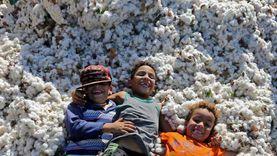 حصاد القطن المصري بين 22 صورة لـ«بي بي سي» لأهم أحداث أفريقيا