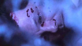 مشهد اغتيال الضابط محمد مبروك في مسلسل «الاختيار 2»: نفذه 11 إرهابيا