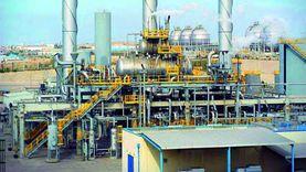 """""""القليوبي"""": قطاع البترول نجح في إدارة تسويق البنية التحتية"""