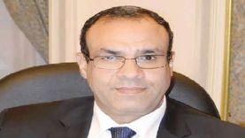 مصر تستعرض أزمة السد الإثيوبي وليبيا وكورونا مع سفراء الاتحاد الأوروبي