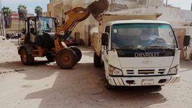 حملات نظافة وتجميل الشوارع ورفع كفاءة الإنارة العامة في كفر الشيخ