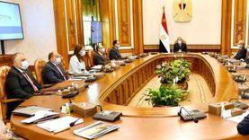 تفاصيل اجتماع السيسي لتطوير قطاع التعدين في مصر