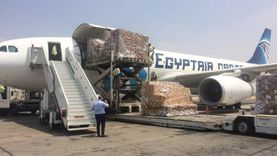 الجسر الجوي الإغاثي يغادر القاهرة لتقديم المساعدات إلى بيروت