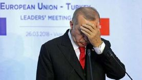 أديب: العالم يعتبر أردوغان محرض رئيسي.. إيده فيها جزء من الدم