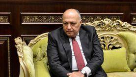 وزير الخارجية: نعمل مع البرلمان لتحقيق المصلحة العليا للدولة