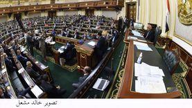 نائب الدستورية السابق: عضو البرلمان يجب أن يكون مدركا لاحتياجات المواطن