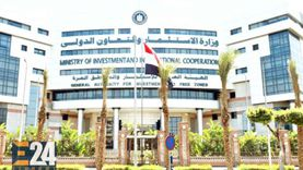 هيئة الاستثمار: انتعاش الاقتصاد المصري بدخول 22 ألف شركة جديدة