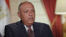 شكري: حان الوقت لمشروع سياسي ليبي بعيدا عن القوات الأجنبية والميليشيات