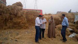 البيئة: جمع 518 ألف طن من قش الأرز وتلقي 212 بلاغا