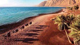 تطوير منطقة المشربية وإنشاء ممشى سياحي بطول 5 كيلو مترات بمدينة دهب