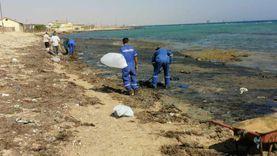"""""""العامة للبترول"""" تزيل آثار تلوث بترولي من شواطئ رأس غارب"""
