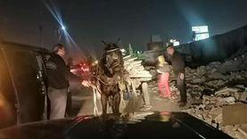 التحفظ على حصان بسبب المخلفات في شبرا «صور»