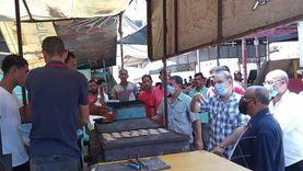 حملات لإزالة الإشغالات ومكافحة القوارض بحي المناخ ببورسعيد