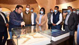 محافظ الفيوم ونائب وزير السياحة يتفقدان متحف الحفريات وتغير المناخ