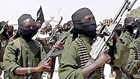 """""""يونايتد وورلد"""": الإرهاب المستفيد الأكبر من التوتر بين مصر وإثيوبيا"""