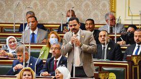 برلماني يكشف حقيقة زيادة سعر زيت الطعام في التعديلات الجديدة