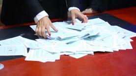 الصعيدي والأشموني والطويل في مقدمة نتائج فرز انتخابات النواب بالوراق