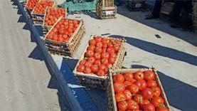 الطماطم  تباع بالجملة  على الأرصفة  في الإسماعيلية