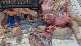 صور.. حملة بمطروح تضبط 142 كيلو لحوما غير صالحة للاستهلاك الآدمي