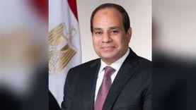 السيسي يستقبل الرئيس التنفيذي لشركة «داسو» للصناعات الجوية