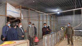 رئيس جامعة أسيوط يتفقد مزارع الدواجن والماشية