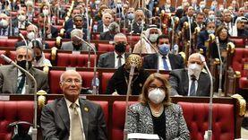 حاتم حشمت ممثلا للهيئة البرلمانية لحزب حماة وطن بمجلس الشيوخ