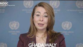 غادة والي: مكافحة الإرهاب في أفريقيا تتطلب منظورا يدعم سيادة القانون