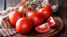 شعبة الخضر: أسعار الطماطم تتراجع.. وأسواق الجملة لم تتأثر بالأمطار