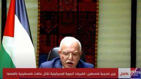 وزير خارجية فلسطين أمام مجلس الأمن: إسرائيل لص مسلح دمر المنازل