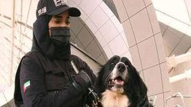 شرطة دبي تستعين بكلاب مدربة لكشف مصابي كورونا (فيديو)