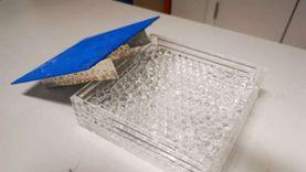 تعاون بين جامعتي بنها وبريستول الإنجليزية في تطوير الخلايا الشمسية