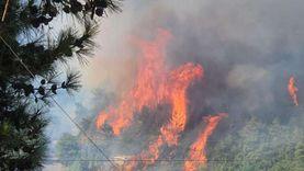 جهود رسمية وشعبية للسيطرة على حرائق غابات لبنان وسط شكوك حول افتعالها